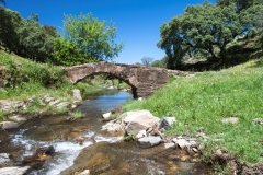 Puente del Albercón