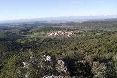 Biodiversidad Sierra