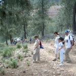 II RUTA 2006