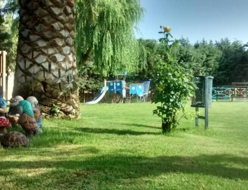 Apertura de temporada de baños en la piscina municipal